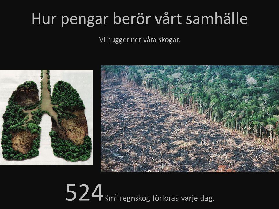 Hur pengar berör vårt samhälle Vi hugger ner våra skogar. 524 Km 2 regnskog förloras varje dag.