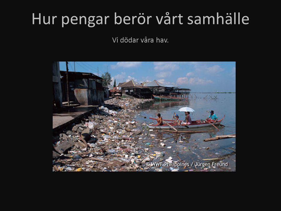 Hur pengar berör vårt samhälle Vi dödar våra hav.