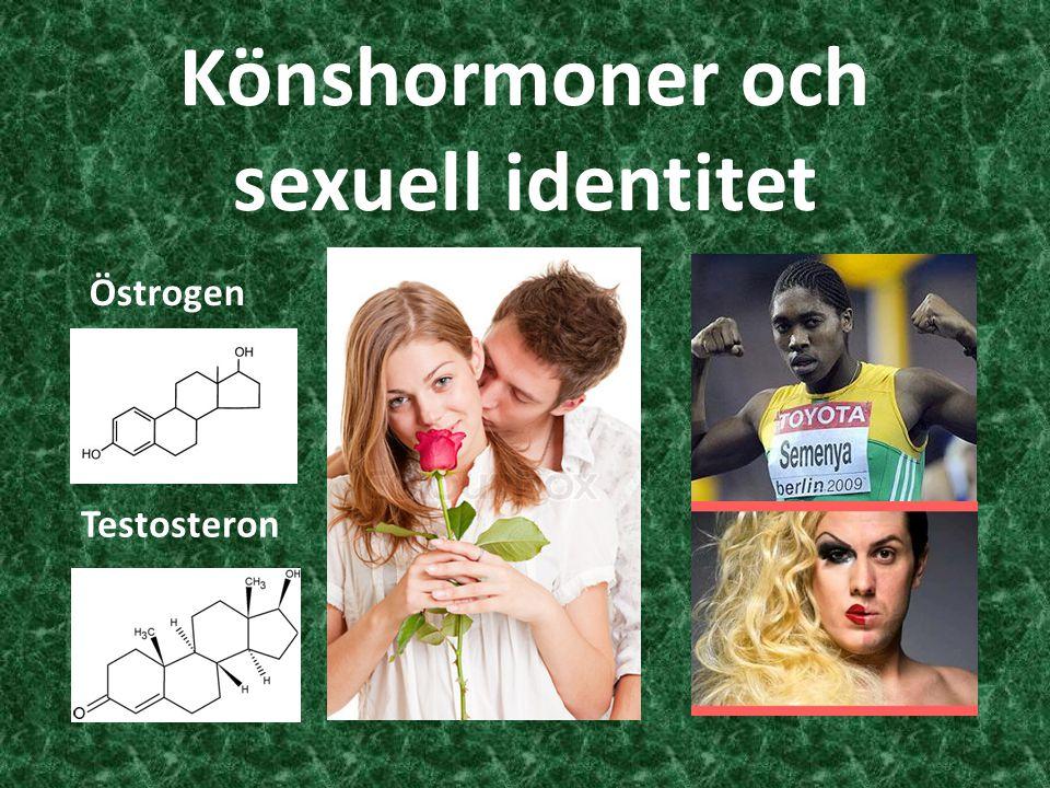 Könshormoner och sexuell identitet Östrogen Testosteron