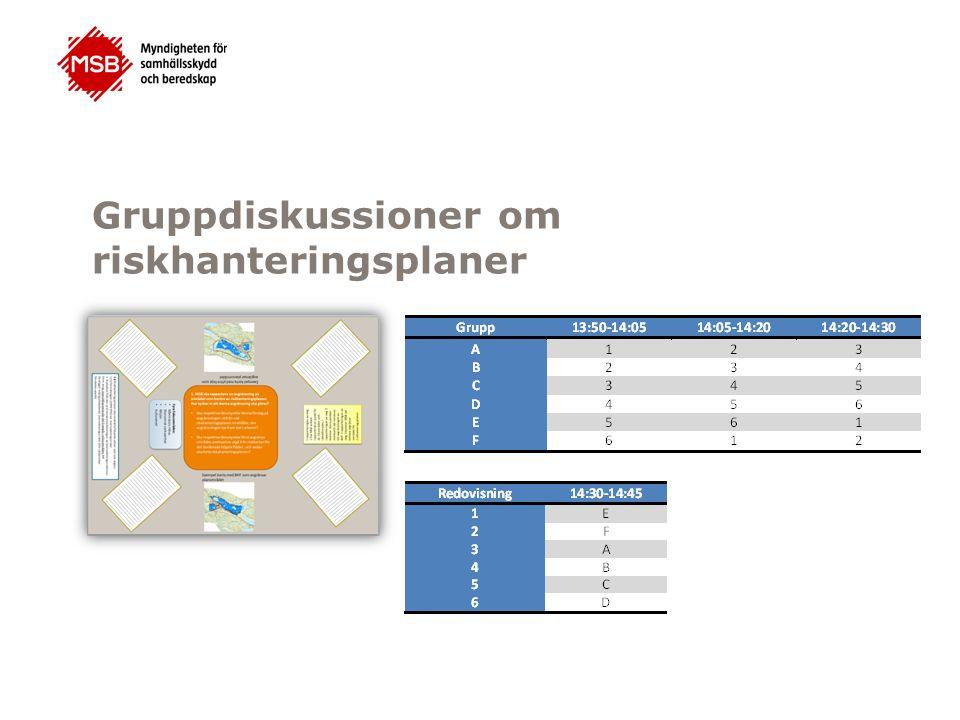 Gruppdiskussioner om riskhanteringsplaner