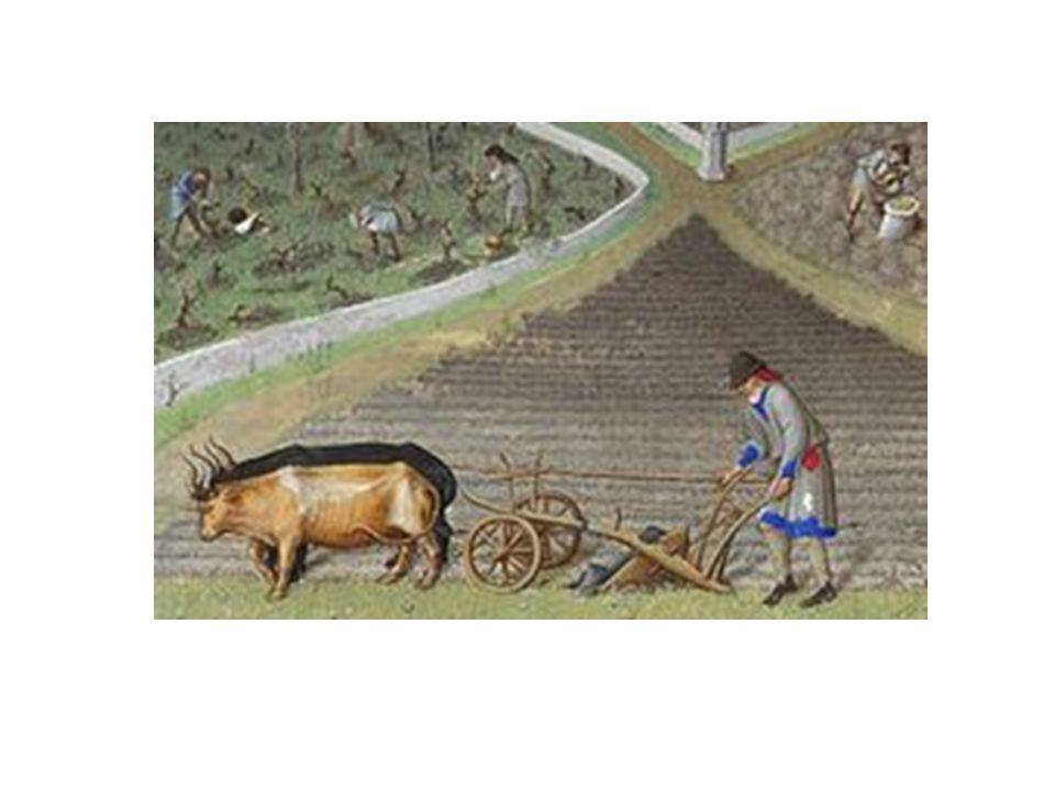 Treskifte, hjulplog Befolkningsökning (jfr. 20 milj år 600 till c.a 70 miljoner år 1300)