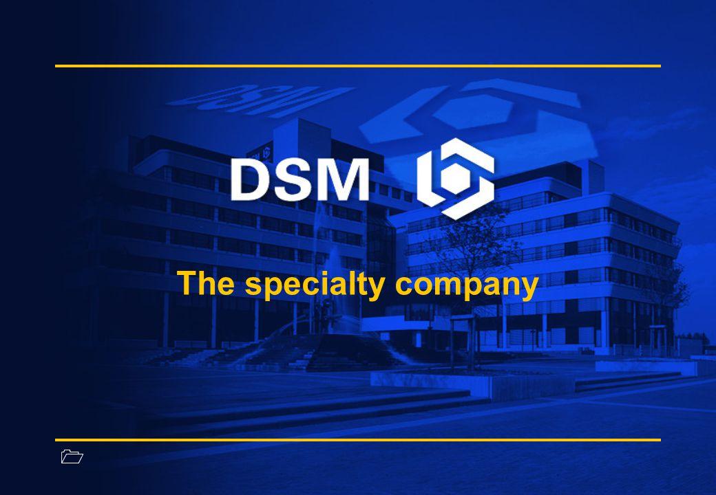 1 DSM Composite Resins Ren, hög kvalitétsprocess för produktion av GRP Rob van de Laarschot Technical Manager Benelux & Scandinavia DSM Composite Resins