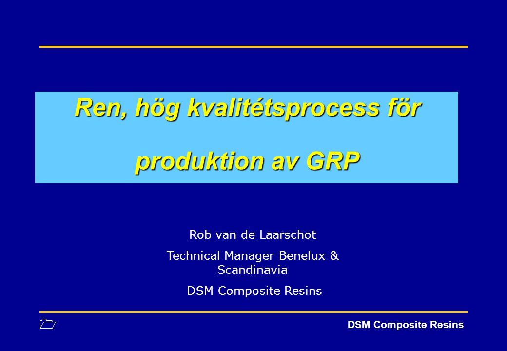 1 DSM Composite Resins Ren, hög kvalitétsprocess för produktion av GRP Rob van de Laarschot Technical Manager Benelux & Scandinavia DSM Composite Resi