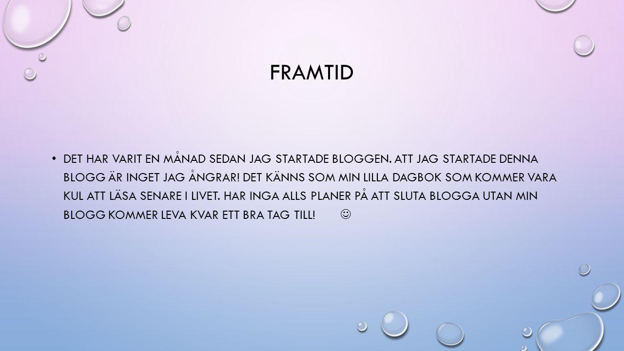 FRAMTID DET HAR VARIT EN MÅNAD SEDAN JAG STARTADE BLOGGEN.