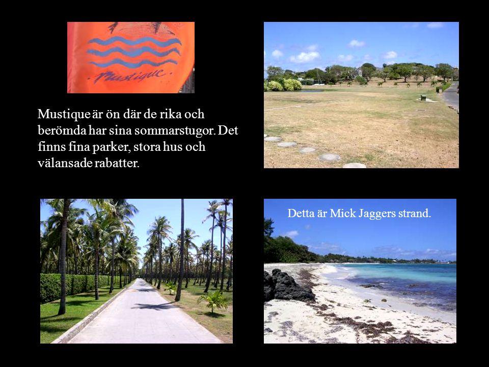 Mustique är ön där de rika och berömda har sina sommarstugor.