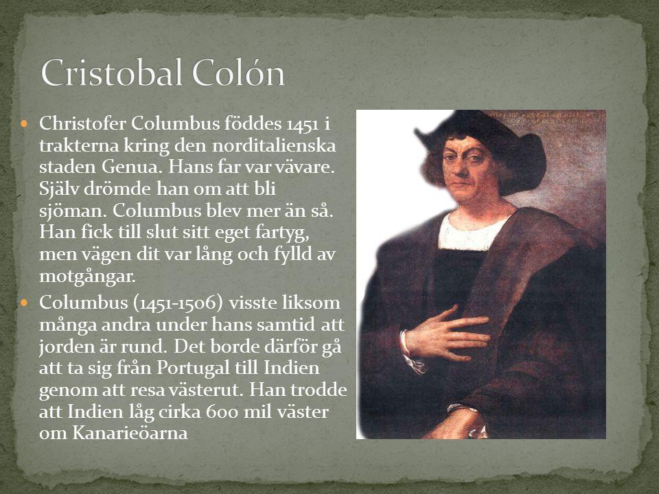 Christofer Columbus föddes 1451 i trakterna kring den norditalienska staden Genua. Hans far var vävare. Själv drömde han om att bli sjöman. Columbus b