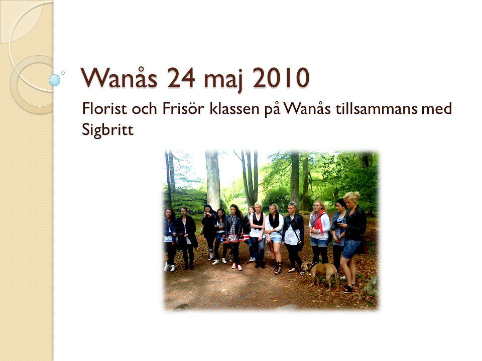 Wanås 24 maj 2010 Florist och Frisör klassen på Wanås tillsammans med Sigbritt