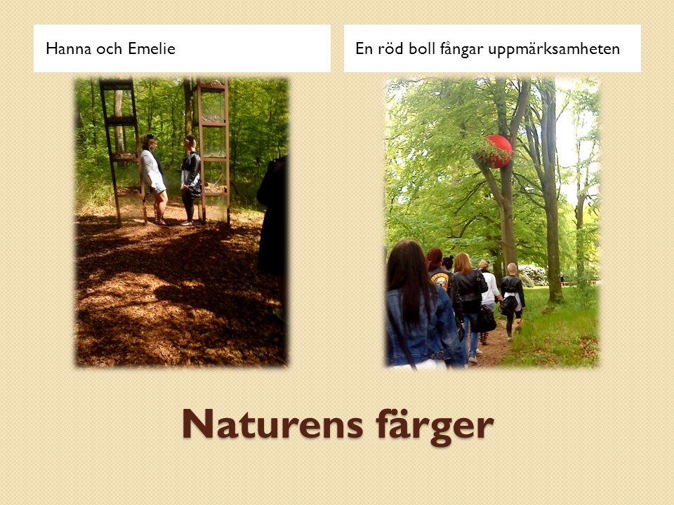 Naturens färger Hanna och EmelieEn röd boll fångar uppmärksamheten