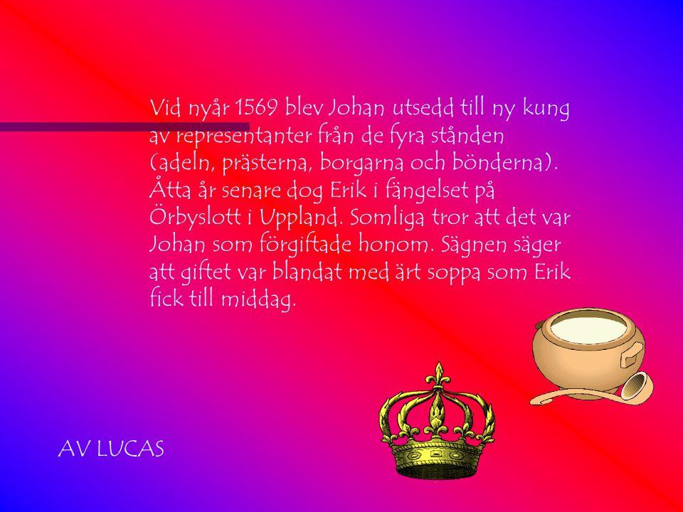 Vid nyår 1569 blev Johan utsedd till ny kung av representanter från de fyra stånden (adeln, prästerna, borgarna och bönderna).