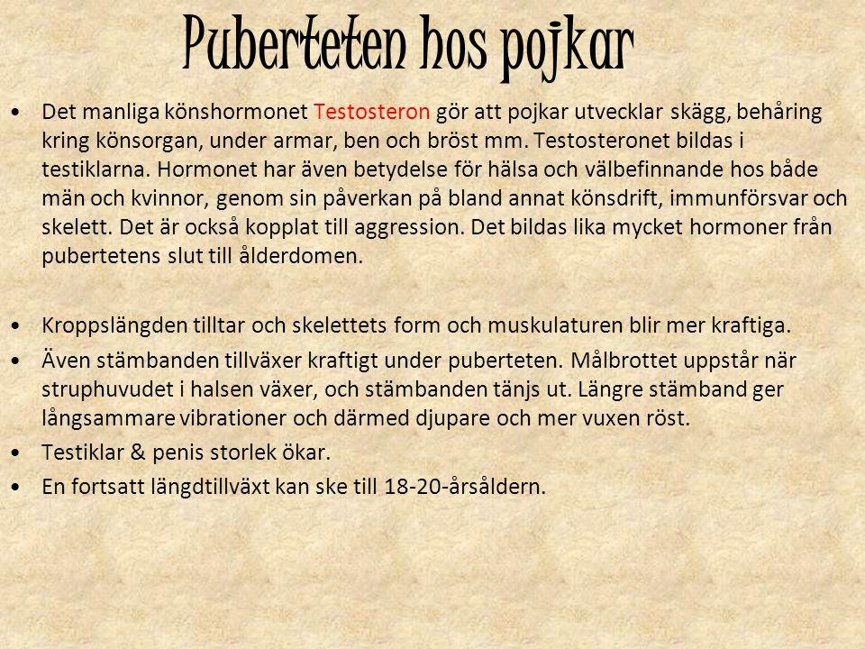 Puberteten hos pojkar Det manliga könshormonet Testosteron gör att pojkar utvecklar skägg, behåring kring könsorgan, under armar, ben och bröst mm. Te