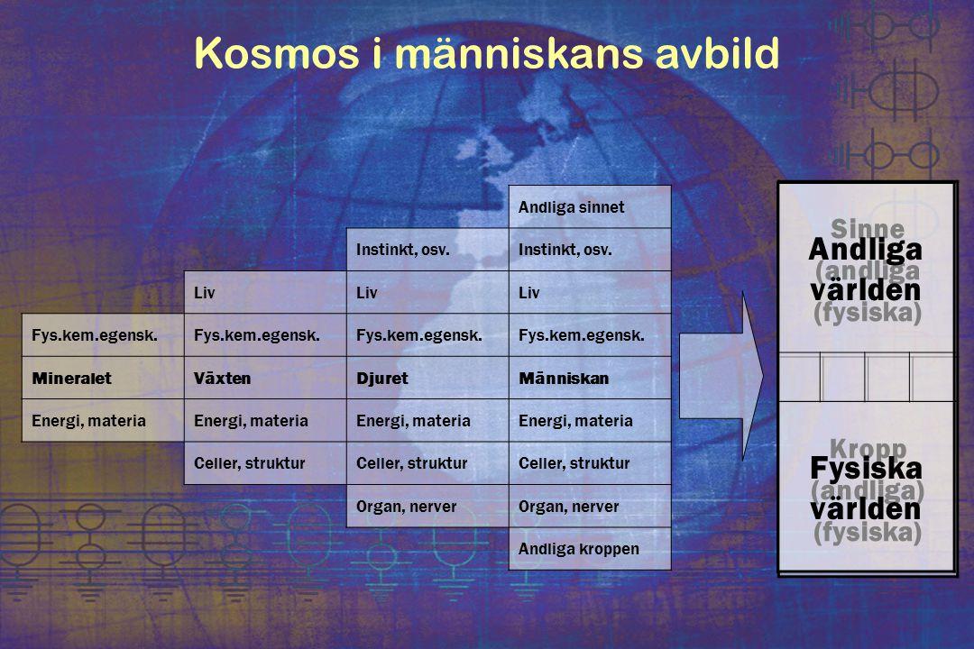 Kosmos i människans avbild Andliga sinnet Instinkt, osv. Liv Fys.kem.egensk. MineraletVäxtenDjuretMänniskan Energi, materia Celler, struktur Organ, ne