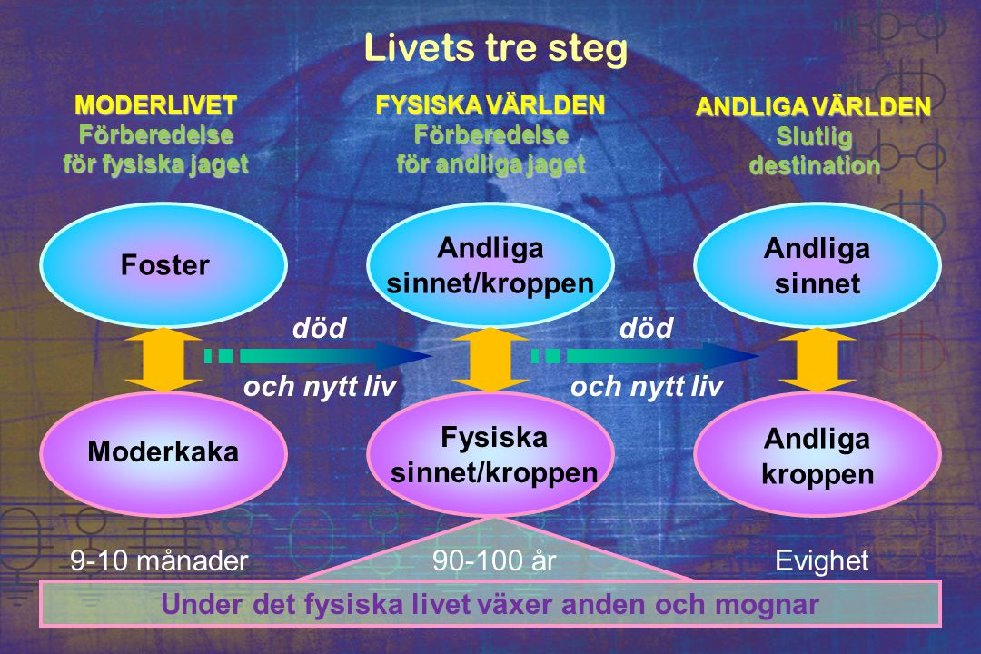 Livets tre steg MODERLIVETFörberedelse för fysiska jaget FYSISKA VÄRLDEN Förberedelse för andliga jaget ANDLIGA VÄRLDEN Slutligdestination Foster Mode