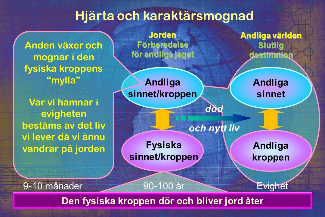 Hjärta och karaktärsmognad JordenFörberedelse för andliga jaget Andliga världen Slutligdestination Andliga sinnet/kroppen Fysiska sinnet/kroppen Andli