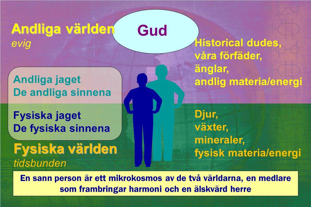 Andliga världen evig Fysiska världen tidsbunden Historical dudes, våra förfäder, änglar, andlig materia/energi Djur, växter, mineraler, fysisk materia