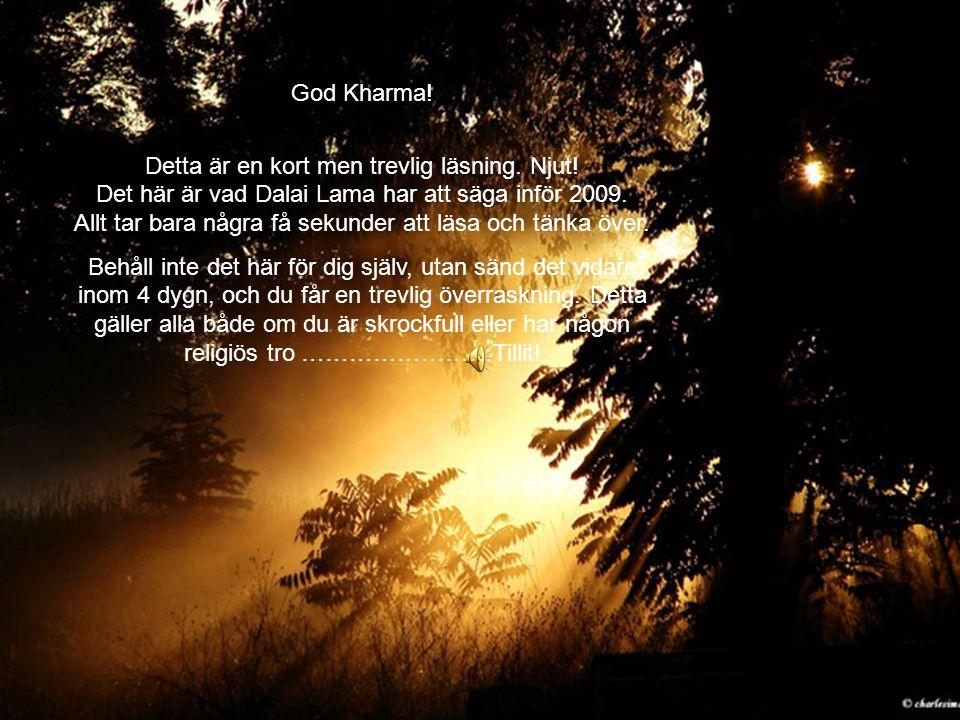 God Kharma! Detta är en kort men trevlig läsning. Njut! Det här är vad Dalai Lama har att säga inför 2009. Allt tar bara några få sekunder att läsa oc