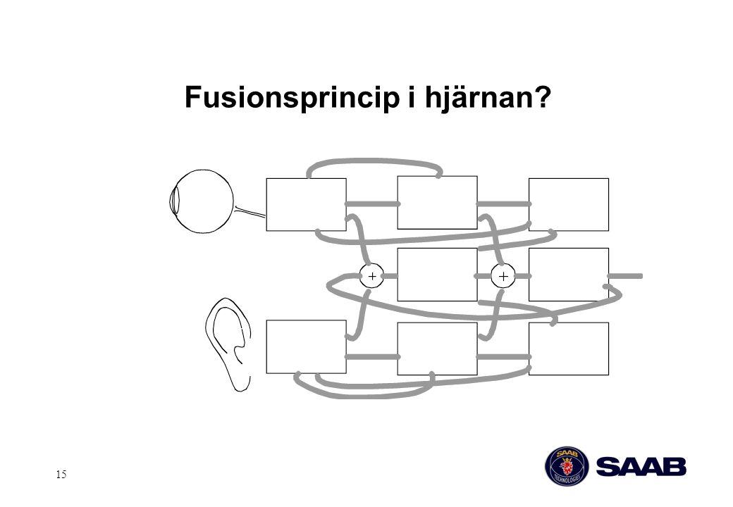 15 Fusionsprincip i hjärnan?