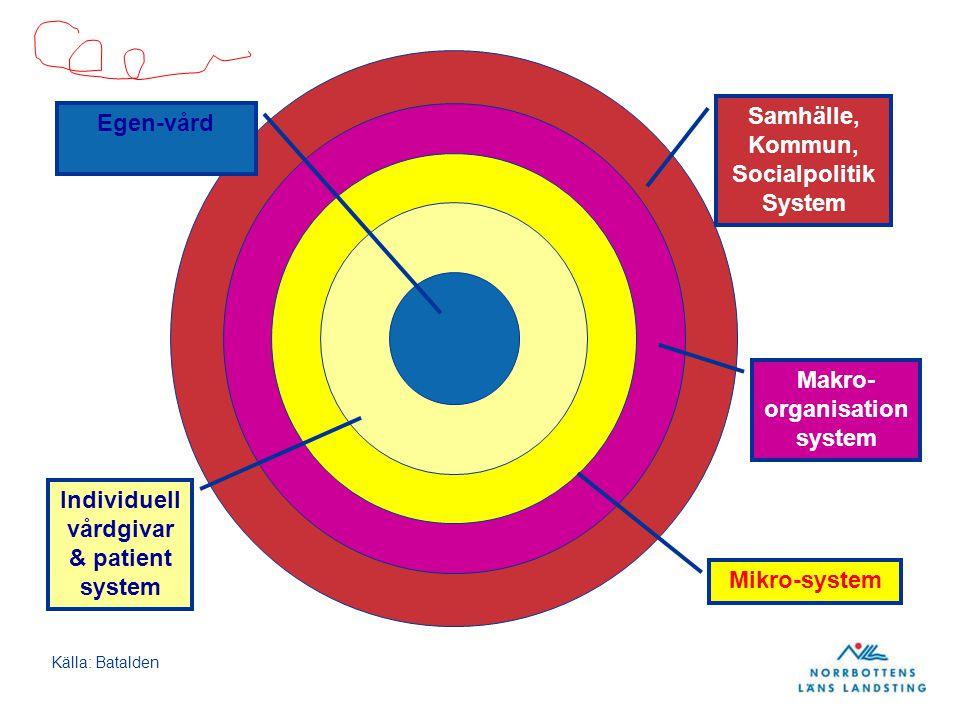 Samhälle, Kommun, Socialpolitik System Makro- organisation system Mikro-system Individuell vårdgivar & patient system Egen-vård Källa: Batalden