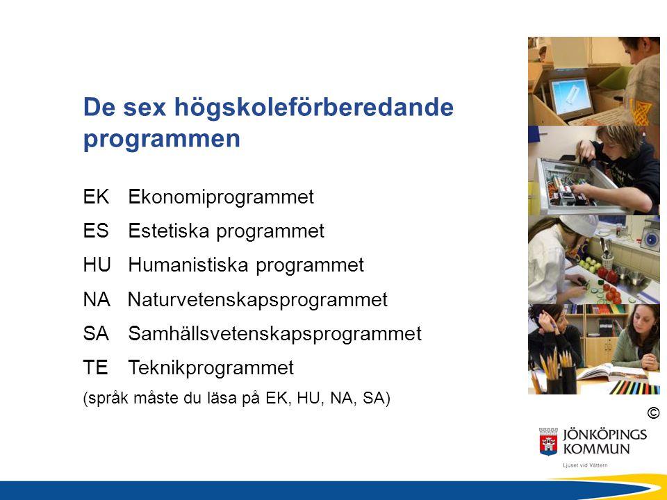 © De sex högskoleförberedande programmen EKEkonomiprogrammet ES Estetiska programmet HUHumanistiska programmet NA Naturvetenskapsprogrammet SASamhälls