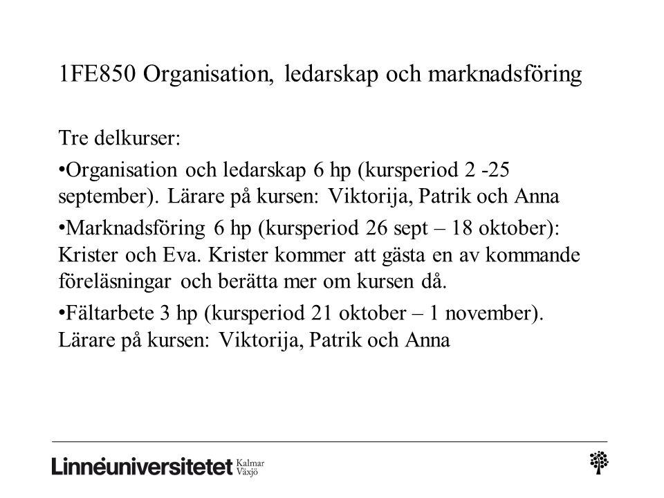 Kursmoment under 1FE850: Teoretiska perspektiv: Organisation och ledarskap: grundläggande begrepp och teorier, tentamen 4.5 hp, U-G-VG Marknadsföring: grundläggande begrepp och teorier, tentamen 4.5 hp, U-G-VG Fältarbete: grundläggande kunskaper i vetenskaplig metod Tillämpning: Rapport 1, organisation, 1.5 hp, U-G Fältstudie: en undersökning av ett företag Rapport 2, marknadsföring, 1.5 hp, U-G Presentationsteknik Integration och tillämpning av marknadsföring och organisation: slutrapport, 3 hp, U-G-VG