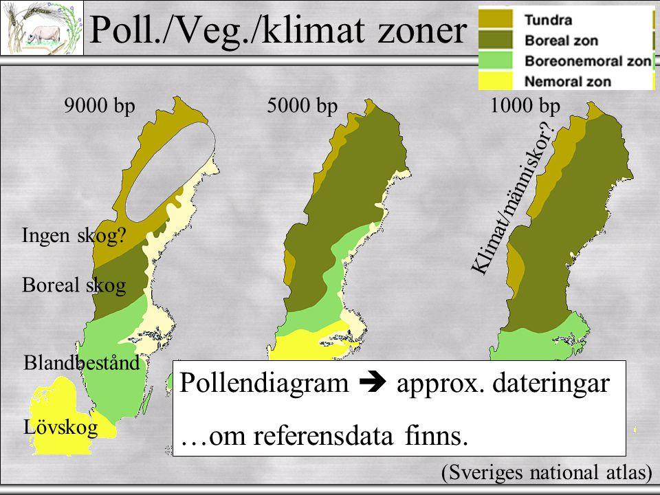 Pollen/Veg./klimatzoner  Växtarts sammansättning  'Pollen zones' (I; IIa; IIb; III...) Problem: Kronologiska gränser flyttas med latitud (Svårt att applicera över avstånd - tidsperioder bättre)
