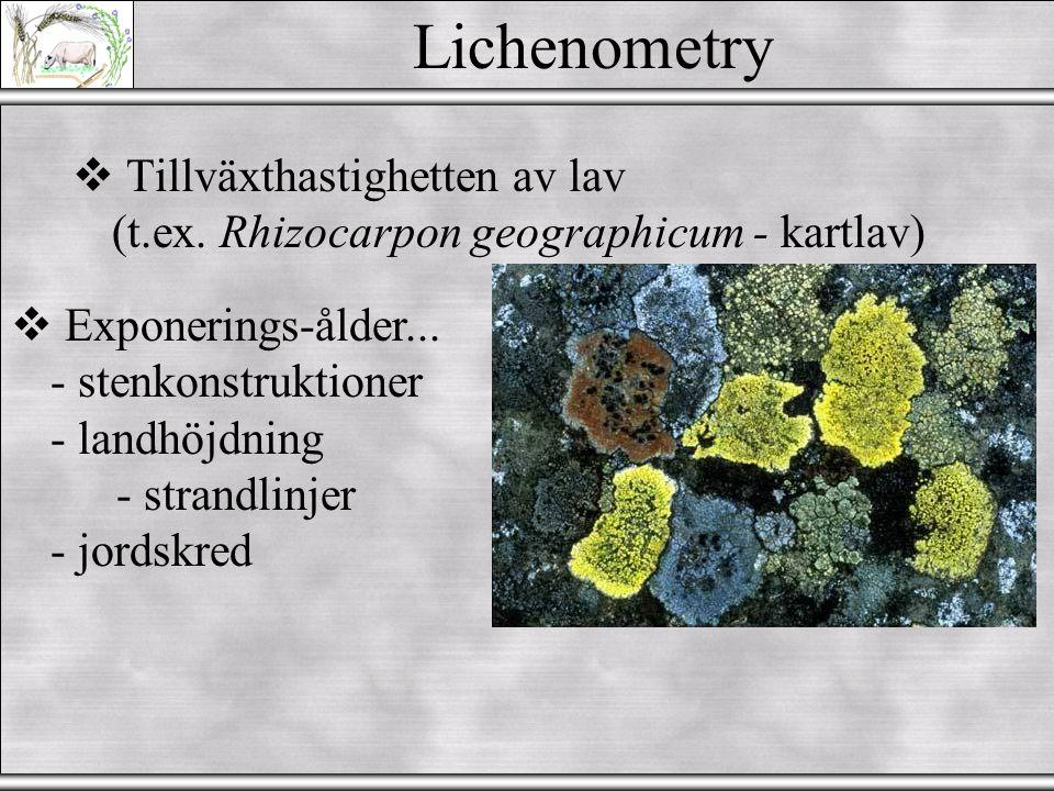 Varvkronologi Syre-isotop Gråskala