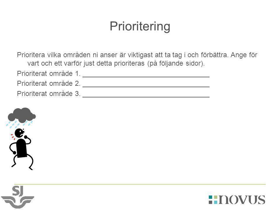 Prioritering Prioritera vilka områden ni anser är viktigast att ta tag i och förbättra. Ange för vart och ett varför just detta prioriteras (på följan