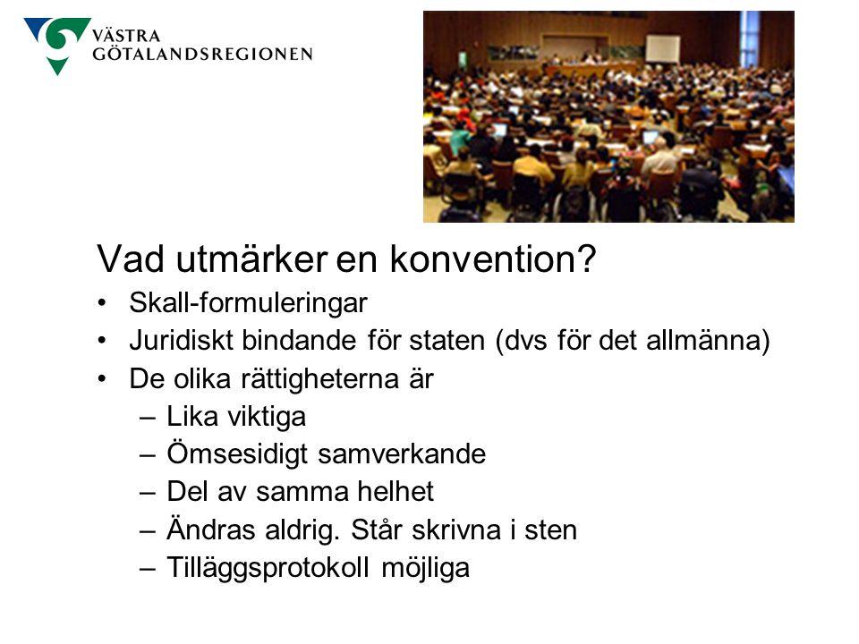 Vad utmärker en konvention? Skall-formuleringar Juridiskt bindande för staten (dvs för det allmänna) De olika rättigheterna är –Lika viktiga –Ömsesidi