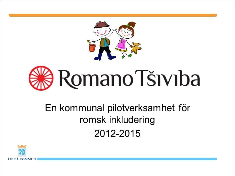Utbildning Förbättrade förutsättningar för barn och ungdomar upp till 30 år med romskt ursprung att fullfölja sina studier samt ökad kunskap hos utbildningsanordnare om romsk kultur och historia.