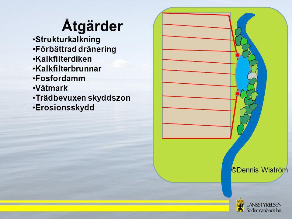 ©Dennis Wiström Åtgärder Strukturkalkning Förbättrad dränering Kalkfilterdiken Kalkfilterbrunnar Fosfordamm Våtmark Trädbevuxen skyddszon Erosionsskydd