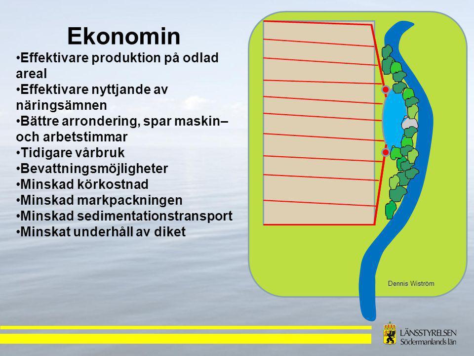 Dennis Wiström Ekonomin Effektivare produktion på odlad areal Effektivare nyttjande av näringsämnen Bättre arrondering, spar maskin– och arbetstimmar