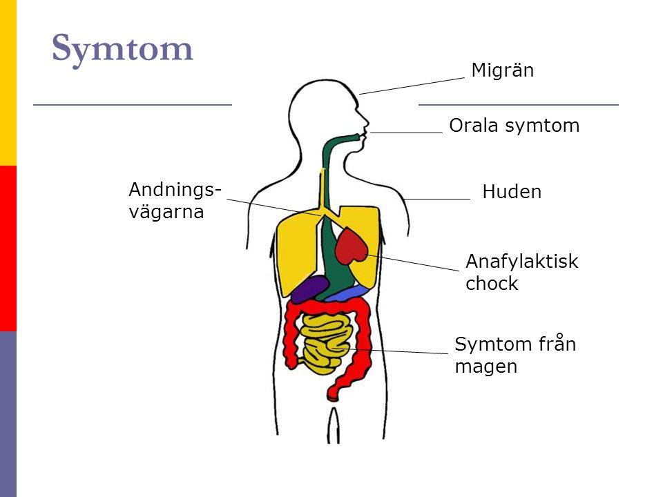 Symtom Andnings- vägarna Migrän Orala symtom Huden Symtom från magen Anafylaktisk chock