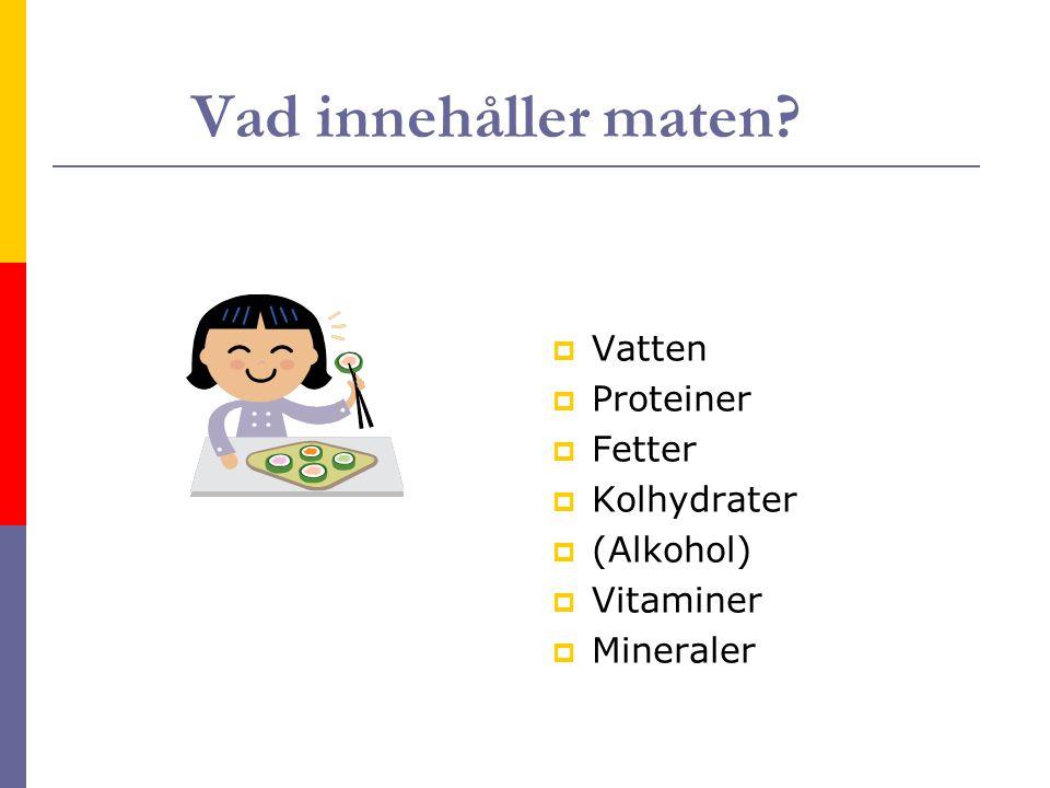 Vad innehåller maten? VVatten PProteiner FFetter KKolhydrater ((Alkohol) VVitaminer MMineraler