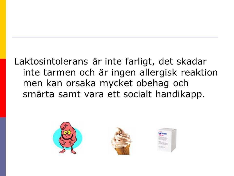 Laktosintolerans är inte farligt, det skadar inte tarmen och är ingen allergisk reaktion men kan orsaka mycket obehag och smärta samt vara ett socialt