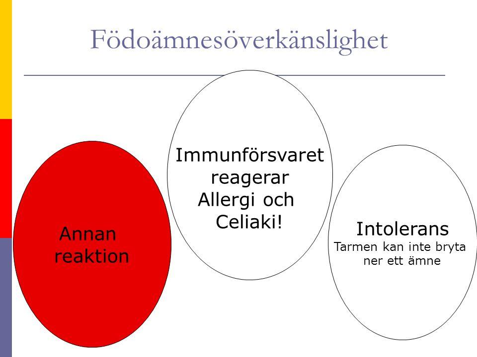Födoämnesöverkänslighet Intolerans Tarmen kan inte bryta ner ett ämne Immunförsvaret reagerar Allergi och Celiaki! Annan reaktion