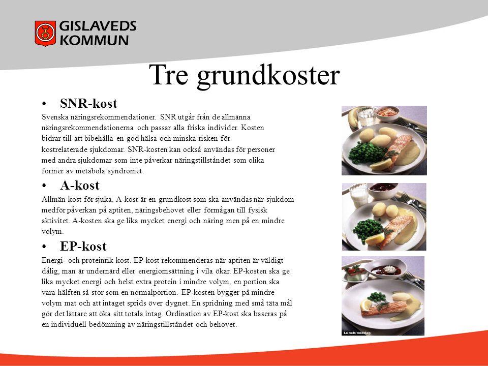 Tre grundkoster SNR-kost Svenska näringsrekommendationer. SNR utgår från de allmänna näringsrekommendationerna och passar alla friska individer. Koste