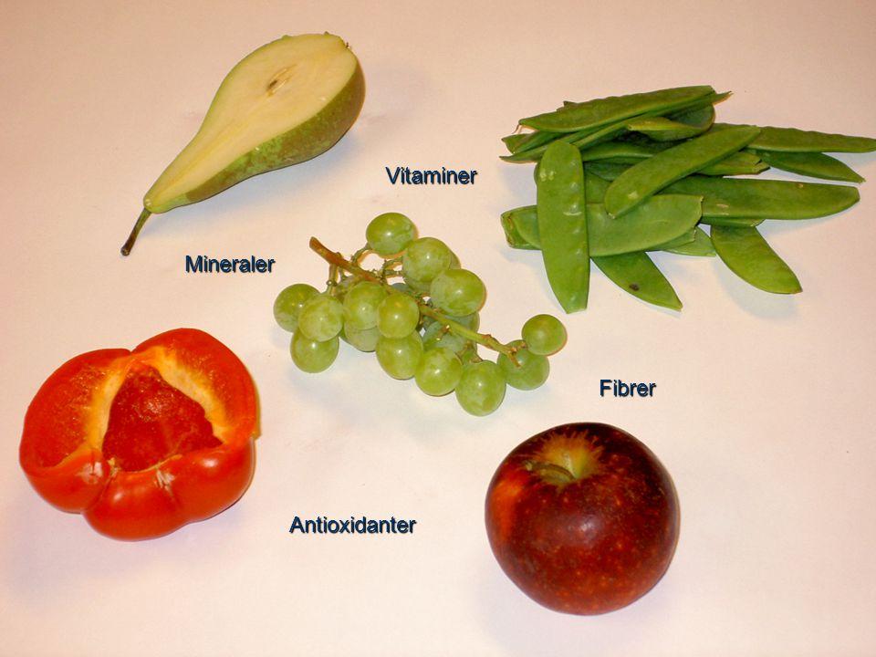 Fibrer Vitaminer Antioxidanter Mineraler