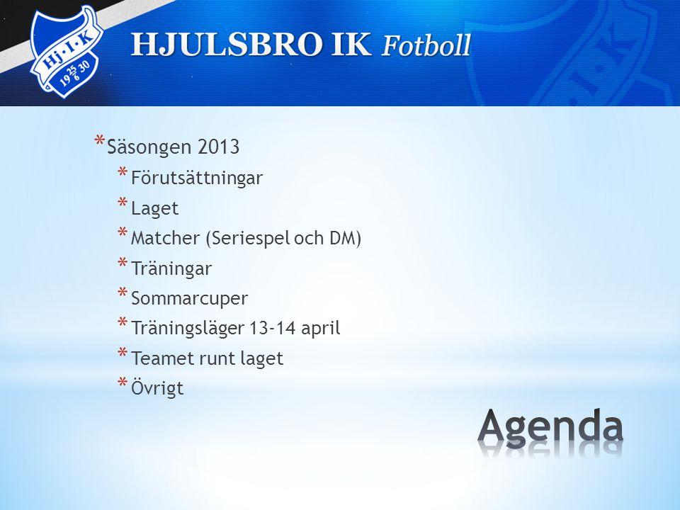 * Säsongen 2013 * Förutsättningar * Laget * Matcher (Seriespel och DM) * Träningar * Sommarcuper * Träningsläger 13-14 april * Teamet runt laget * Övrigt