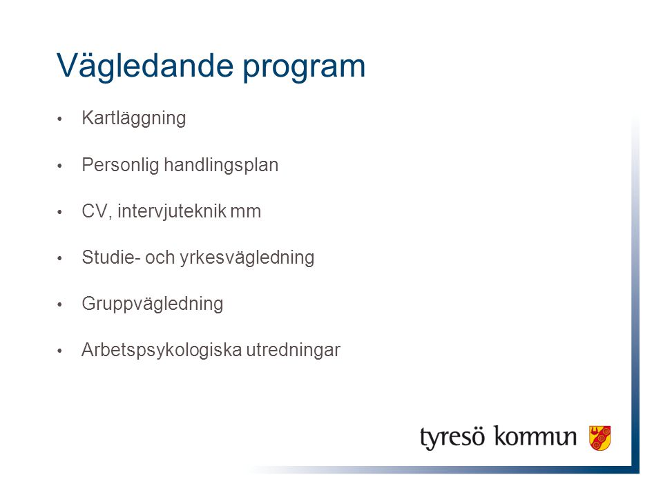Vägledande program Kartläggning Personlig handlingsplan CV, intervjuteknik mm Studie- och yrkesvägledning Gruppvägledning Arbetspsykologiska utredning