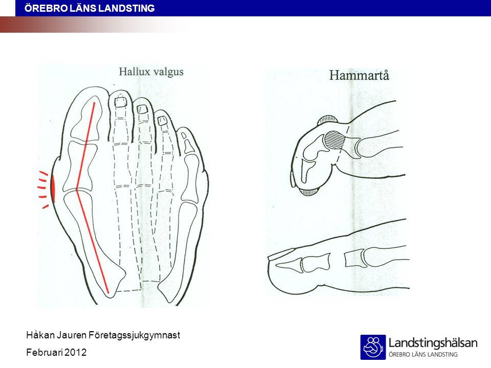 ÖREBRO LÄNS LANDSTING Håkan Jauren Företagssjukgymnast Februari 2012