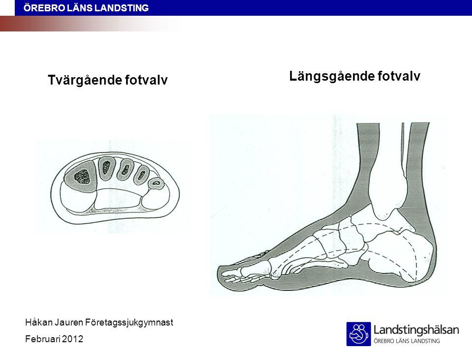 ÖREBRO LÄNS LANDSTING Håkan Jauren Företagssjukgymnast Februari 2012 Tvärgående fotvalv Längsgående fotvalv