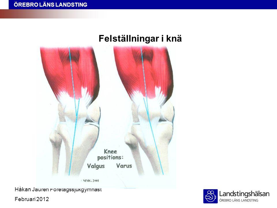 ÖREBRO LÄNS LANDSTING Håkan Jauren Företagssjukgymnast Februari 2012 Felställningar i knä