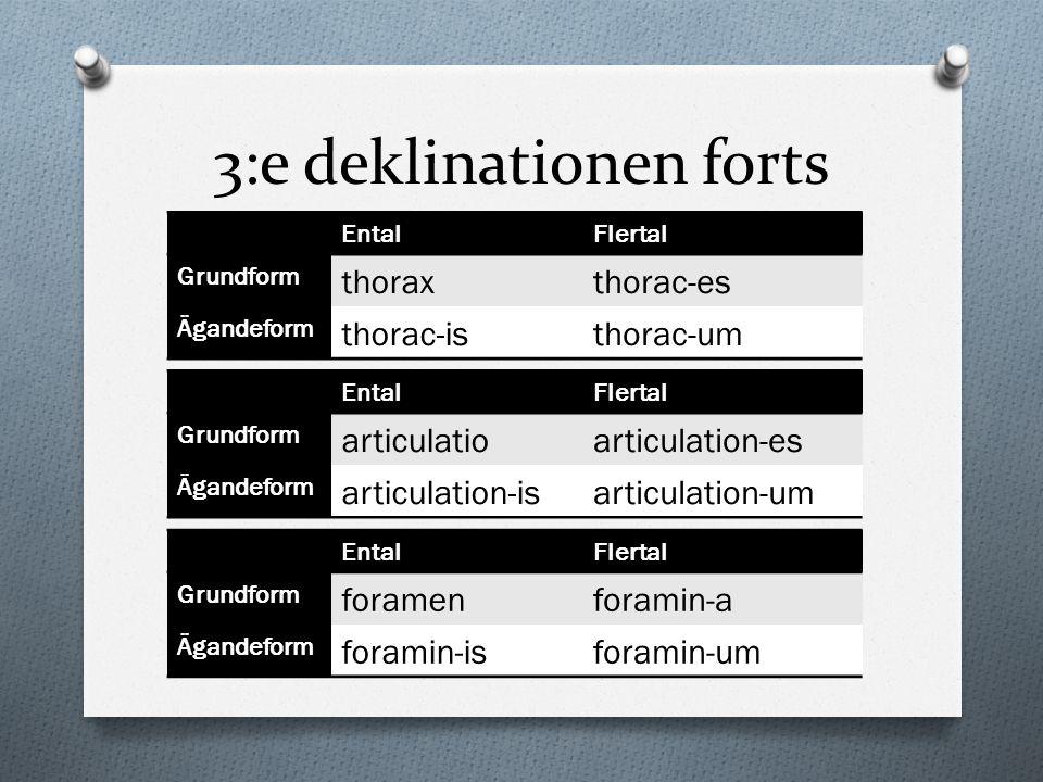 3:e deklinationen forts EntalFlertal Grundform foramenforamin-a Ägandeform foramin-isforamin-um EntalFlertal Grundform articulatioarticulation-es Ägan