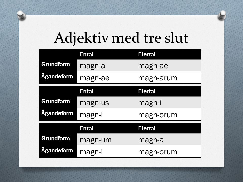 Adjektiv med tre slut EntalFlertal Grundform magn-ummagn-a Ägandeform magn-imagn-orum EntalFlertal Grundform magn-usmagn-i Ägandeform magn-imagn-orum