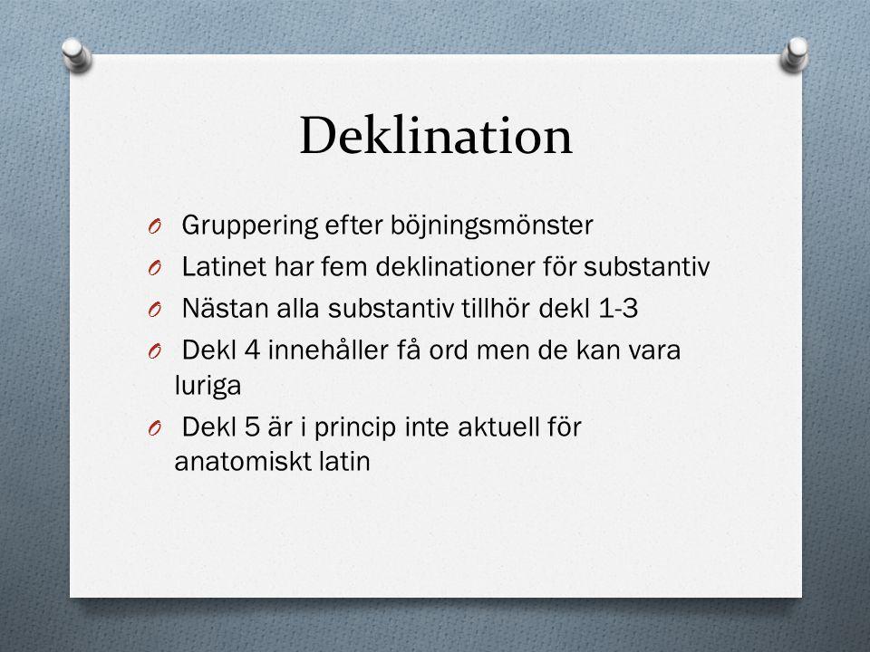 Deklination O Gruppering efter böjningsmönster O Latinet har fem deklinationer för substantiv O Nästan alla substantiv tillhör dekl 1-3 O Dekl 4 inneh