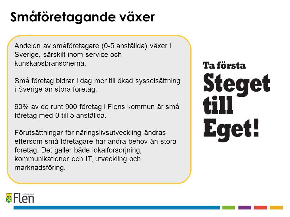 Andelen av småföretagare (0-5 anställda) växer i Sverige, särskilt inom service och kunskapsbranscherna. Små företag bidrar i dag mer till ökad syssel