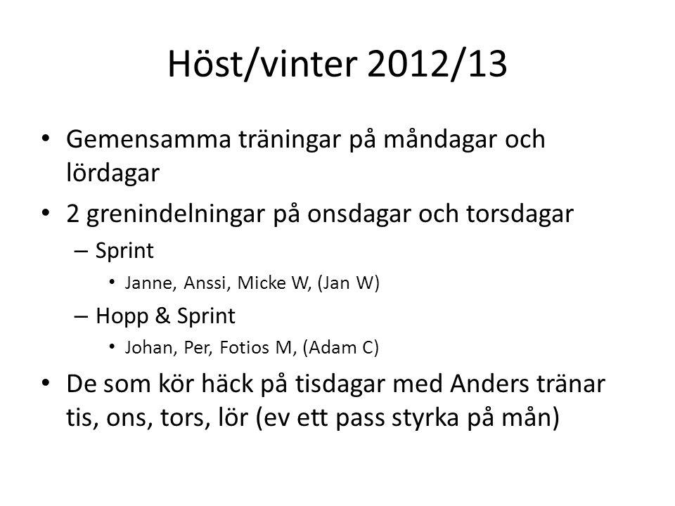 Gemensamma träningar på måndagar och lördagar 2 grenindelningar på onsdagar och torsdagar – Sprint Janne, Anssi, Micke W, (Jan W) – Hopp & Sprint Joha