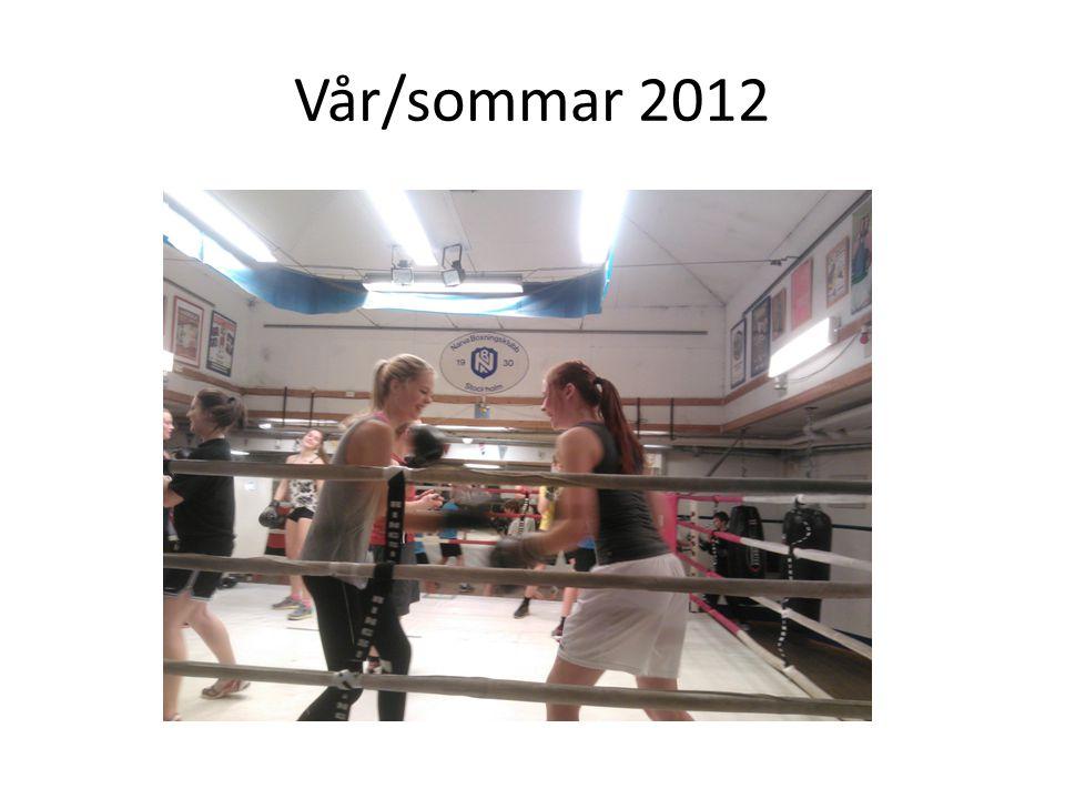 Vår/sommar 2012