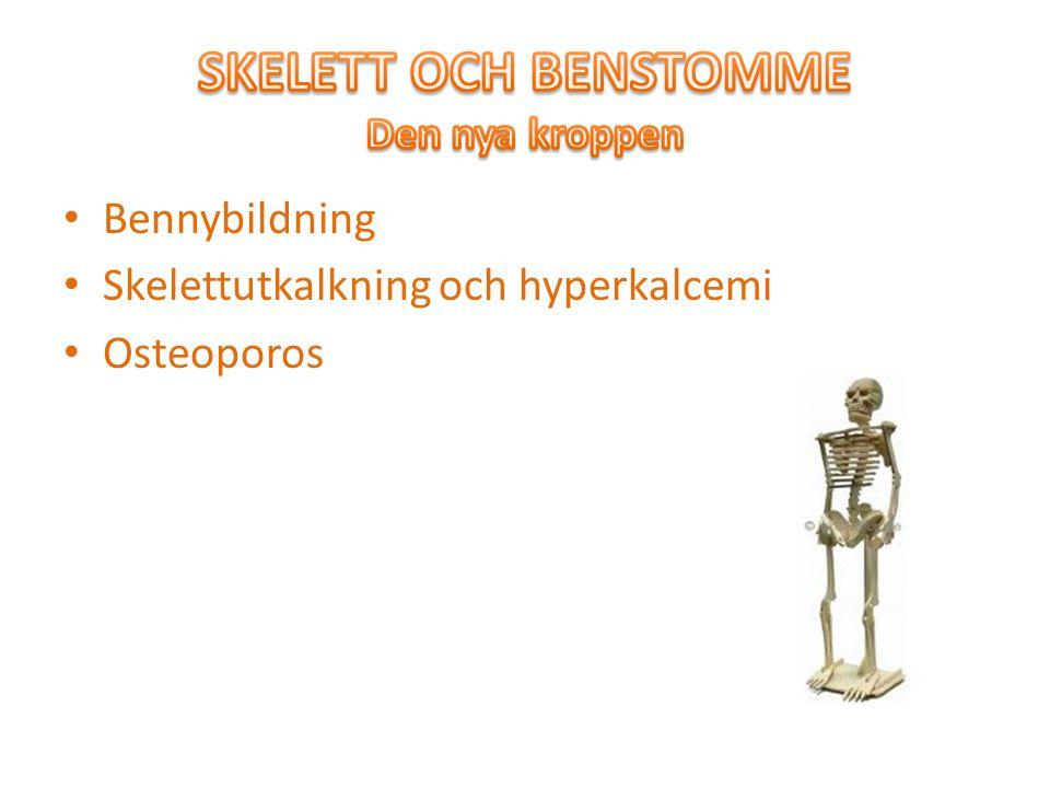 Bennybildning Skelettutkalkning och hyperkalcemi Osteoporos