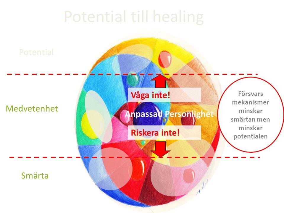 Medvetenhet Anpassad Personlighet Potential till healing Riskera inte! Våga inte! Försvars mekanismer minskar smärtan men minskar potentialen Potentia