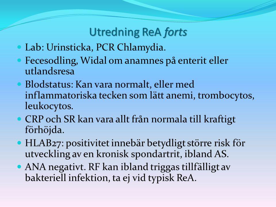 Utredning ReA forts Lab: Urinsticka, PCR Chlamydia. Fecesodling, Widal om anamnes på enterit eller utlandsresa Blodstatus: Kan vara normalt, eller med
